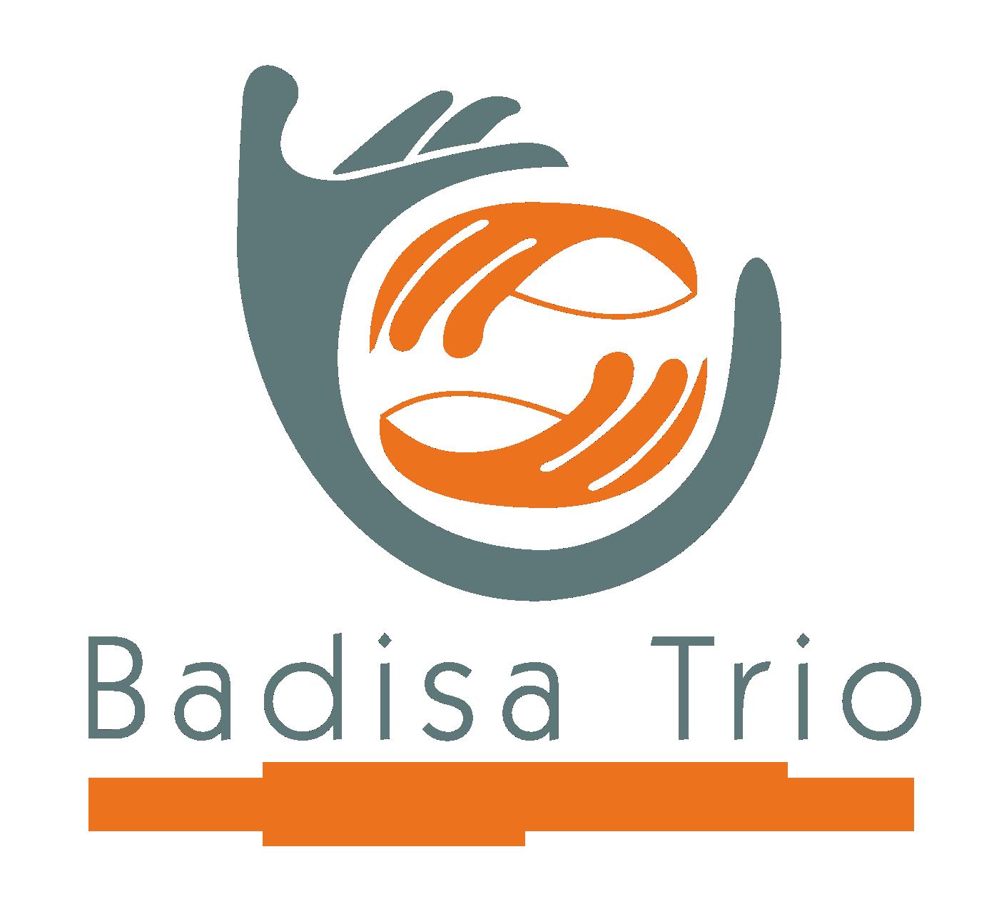 Badisa Trio - Child Protection Cape Town